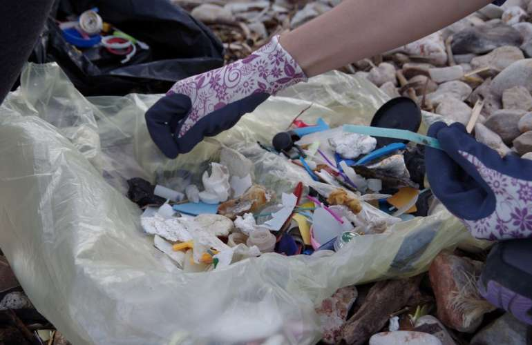 Zaglav beach cleaning